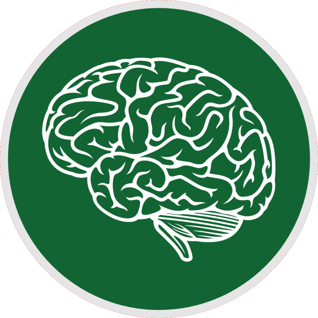 ars accademia neurrallearning