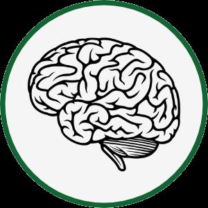 neurallearning
