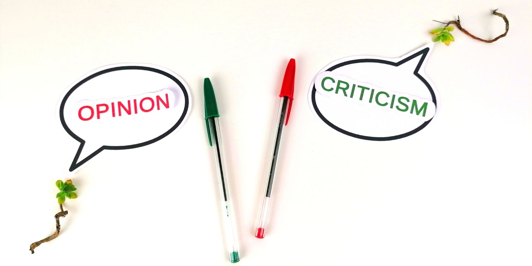 opinion and criticism